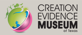 Creation Evidence Museum Logo